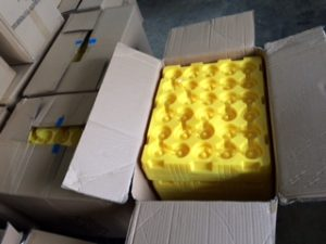 sorted_yellowpvctrays